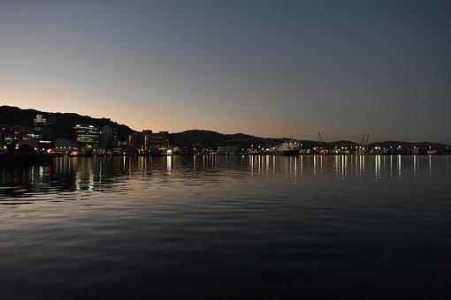 Wellington, New Zealand, City, Harbour, View, Sea