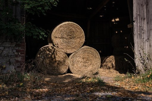 Barn, Agriculture, Hay Bales, Straw, Cattle Feed