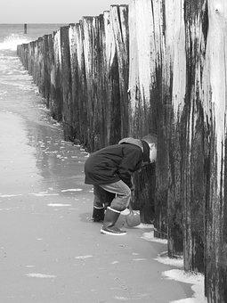 Child, Sea, Beach, Water, Toddler, Small