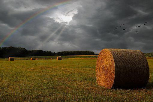 Field, Straw Bales, Thunderstorm, Clouds, Dark, Sunbeam