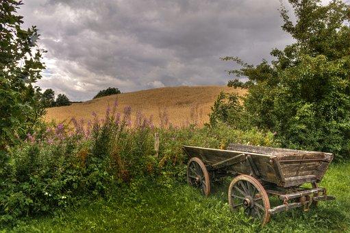 Agriculture, Cutaway Van Chassis, Trævogn, Clouds