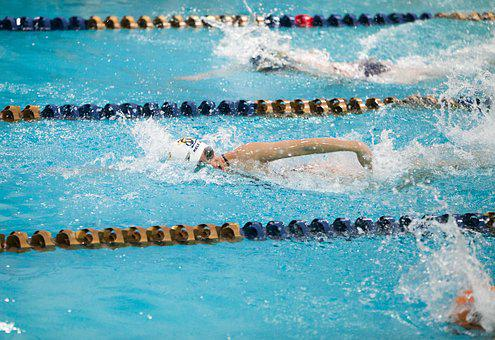 Swimming, Athlete, Pool, Competition, Water, Indoor