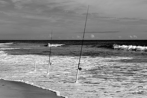 Ocean, Fishing Poles, Beach, Surf, Fishing, Water