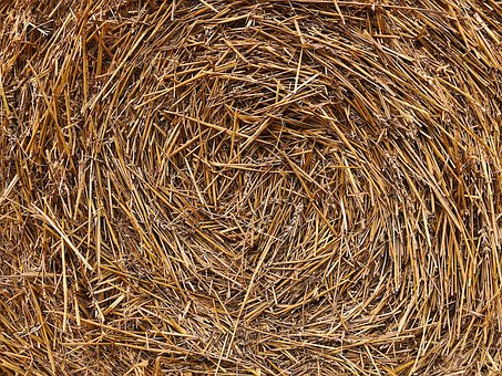 Hay, Straw, Harvest, Agriculture, Farming, Hay Bale