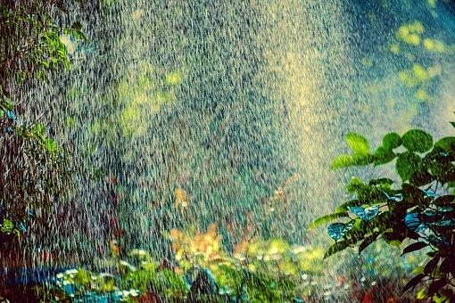 Sprinkler, Irrigation, Backlighting, Water, Spray