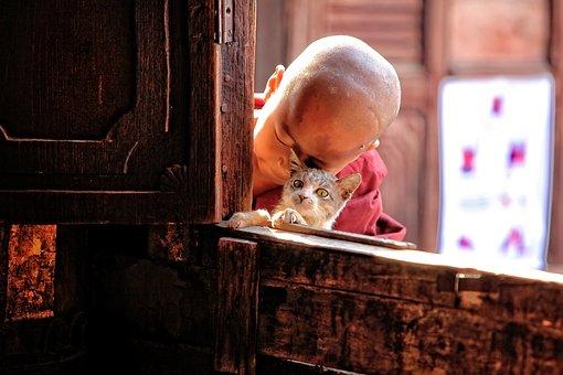 Kids, Child, Myanmar, Monastery, Buddhism