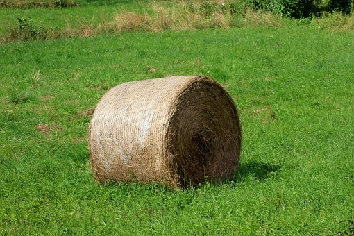 Bales Of Hay, Landscape, Agriculture, Hay, Meadow