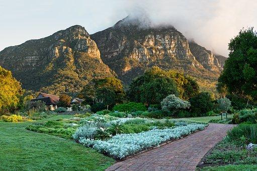 Kirstenbosch, Table Mountain, Mountain, Landscape