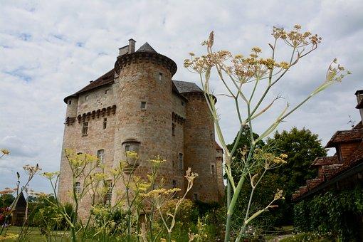 Castle, Flowers, Yellow, Garden, Romantic, Park, Plants
