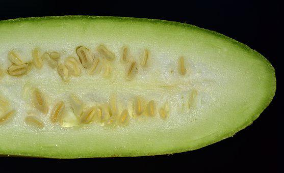 Summer Squash, Green, Long, Seeds, Cores, Sliced