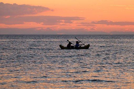 Canoeing, Sport, Water, Sea, Paddle, Kayak, Summer