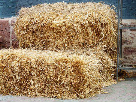 Hay, Hay Bales, Summer, Field, Harvest, Agriculture
