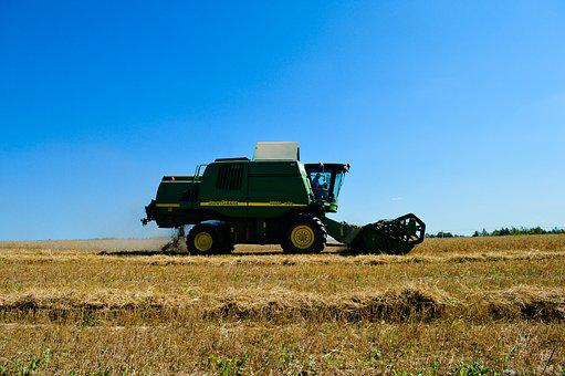 Harvester, Harvest, Wheat, Cereals, Field, Summer