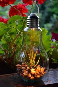 Light Bulb, Lamp, Decoration, Light, Decorate, Evening