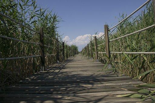 Sultan Marshes, Kayseri, Erciyes, Nature, Landscape