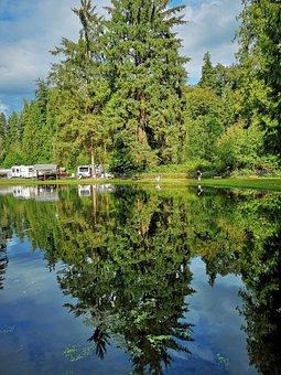 Water, Nature, Tree, Landscape, Lake, Reflection