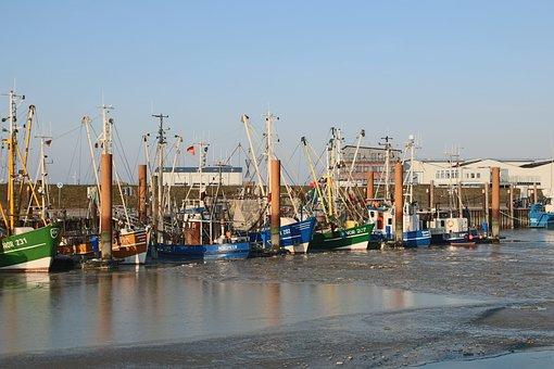 Cutter, Port, Ship, Fisherman, Fishing Boat, North Sea