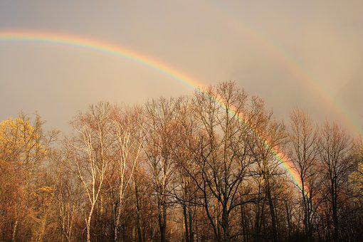 Fall, Rainbow, Nature, Landscape, Sky, Autumn, Trees