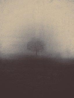 Misty, Fog, Nature Haze, Foggy, Gloomy, Spooky