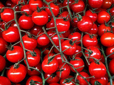 Cherry Tomato, Tomato, Vegetable, Vine, Red, Tomatoes