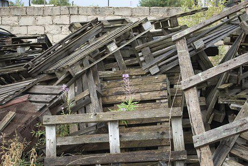 Construction, Flower, Pallets, Wall, Blocks