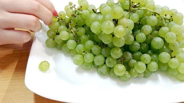 Grapes, Ceongpodo, Fruit, Chartreuse, Sejong City
