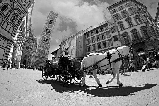 Cart, Horse, Walk, Sightseeing, City, Florence