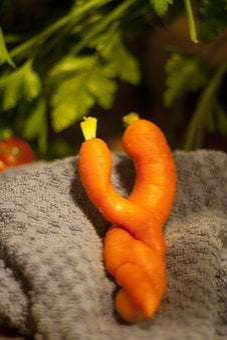 Carrot, Gardening, Sexy, Carrot Love, Loving, Eat