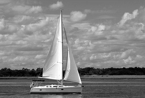 Sailboat, River, Sailing, Florida, Usa, Boat, Water