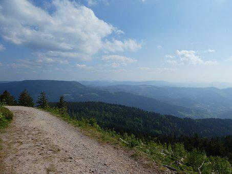 Westweg, Black Forest, Trail, Forest, Nature, View