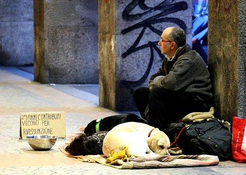 Man, Man On The Street, Homeless, Solitude, Road, Dog
