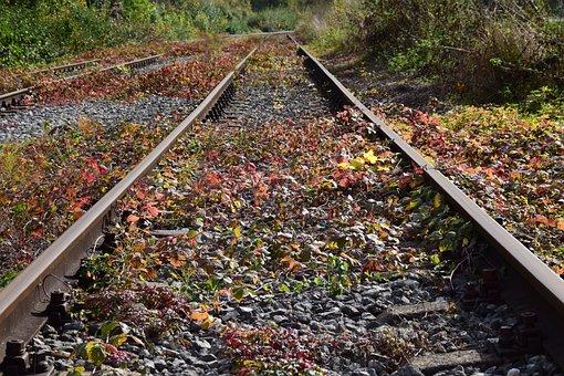 Rails, Autumn, Nature, Track, Train, Track In Autumn
