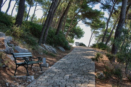 Dubrovnik, Away, Bank, Trees, Nature, Rest, Park, Bench