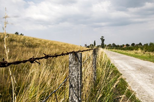 Barbed Wire, Away, Meadow, Dike, Fence, Landscape