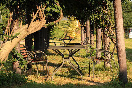 Chair, Forest, Table, Wood, Bench, Landscape, Furniture