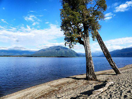 Lake Brunner, New Zealand, Lake, Landscape, Nature