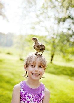 Children, Kids, Backlight, Hen, Mischievous, Childhood