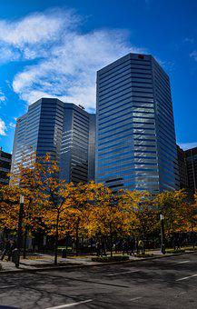 Fall, City, Trees, Landscape, Color, Buildings