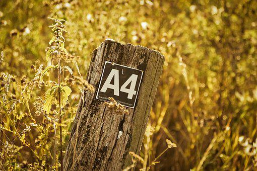 Nature, Trail, Path, Hiking, Shield, Hike, Scenic
