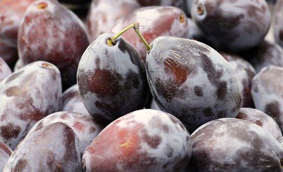 Plums, Fruit, Fruits, Ripe, Violet, Food, Blue, Healthy