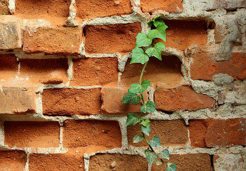 Lake Dusia, Brick, Old, Red, The Walls Of The, Texture