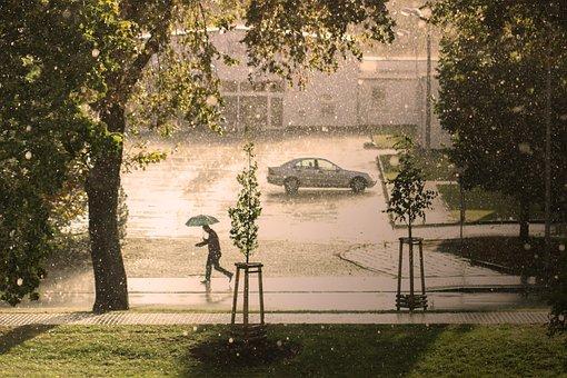 Man, Umbrella, Rain, Hail, Storm, Run, Thunderstorm