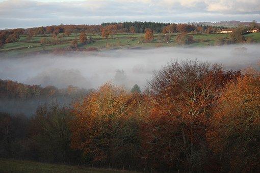Mist, Valley, Field, Fog, Morning, Panorama, Tree