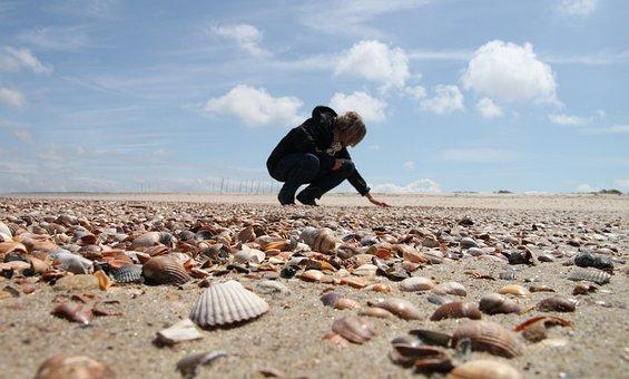 Netherlands, Zealand, Walcheren, Vrouwenpolder, Beach