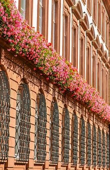 Architecture, Facade, Outdoor, House, Building, Flowers