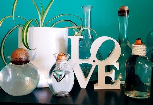 Decor, Love, Plant, Decoration, Design, Feelings