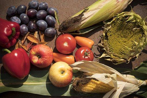 Autumn, Harvest, Paprika, Plums, Apple, Tomatoes
