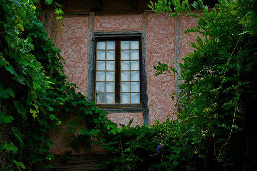 Collonges Red, Window, Vine, Facade, Leaves, Red Wall