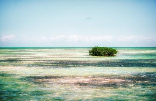 Caribbean, Island, Cuba, Sea, Water, Tropical, Nature