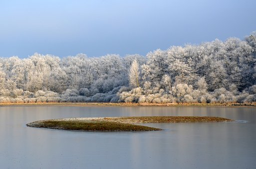 Frost, Pond, Winter, Cold, Nature, Frozen, Water, Gel